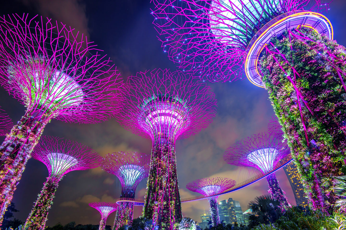 Asian tigers bid to become 'street smart' super cities